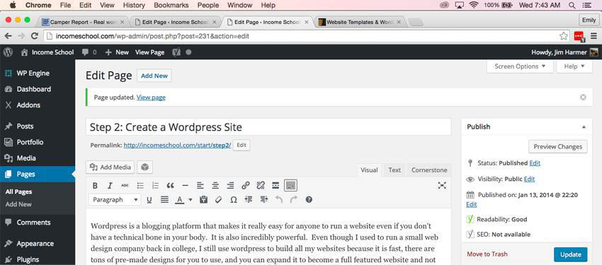 This is a screenshot of what WordPress looks like when writing this article. It's really easy to use.